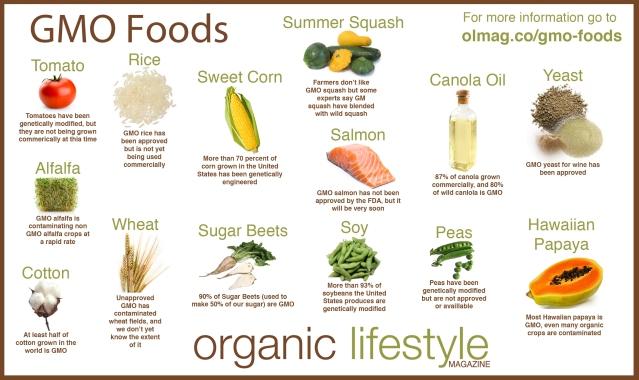 gmo-foods.jpg
