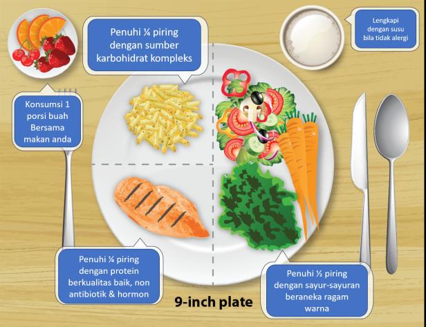 Proporsi makan harian